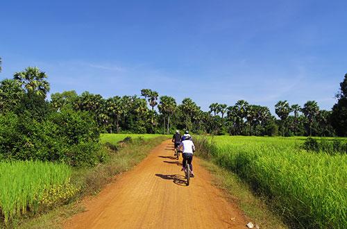 カンボジア・サイクリングツアー2014 アンコール遺跡&田舎道を走る 8日目 西バライ8