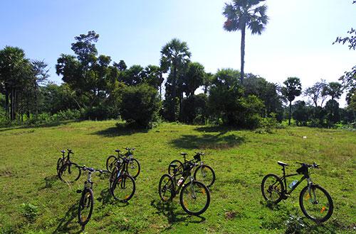 カンボジア・サイクリングツアー2014 アンコール遺跡&田舎道を走る 8日目 西バライ9