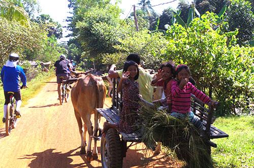 カンボジア・サイクリングツアー2014 アンコール遺跡&田舎道を走る 8日目 西バライ11