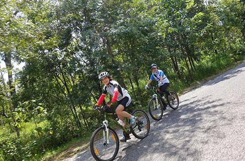 カンボジア・サイクリングツアー2014 アンコール遺跡&田舎道を走る 4日目 コーケー遺跡群3