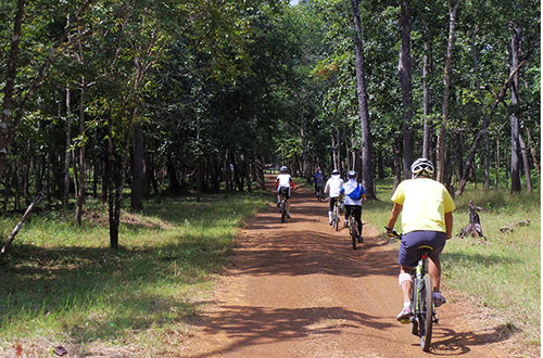 カンボジア・サイクリングツアー2014 アンコール遺跡&田舎道を走る 4日目 コーケー遺跡群6