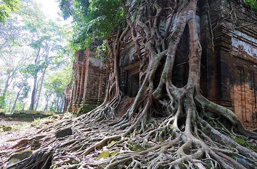 カンボジア・サイクリングツアー2014 アンコール遺跡&田舎道を走る 4日目 コーケー遺跡群9