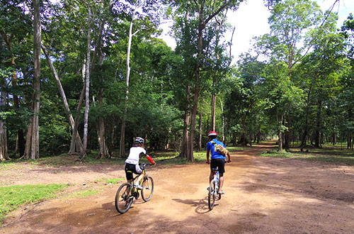 カンボジア・サイクリングツアー2014 アンコール遺跡&田舎道を走る 4日目 コーケー遺跡群10