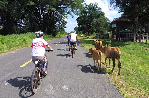 カンボジア・サイクリングツアー2014 アンコール遺跡&田舎道を走る 5日目 プレアヴィヒア15