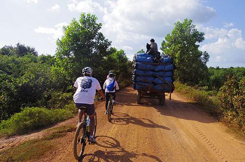 カンボジア・サイクリングツアー2014 アンコール遺跡&田舎道を走る 6日目 ベンメリア遺跡9