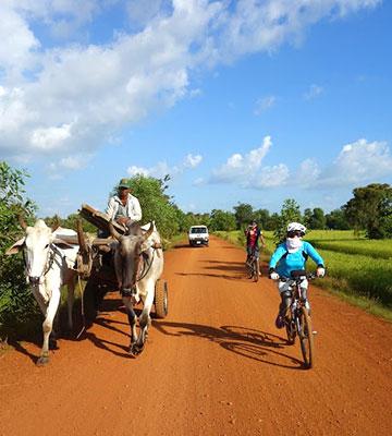 カンボジア・サイクリングツアー2014 アンコール遺跡&田舎道を走る 6日目 ベンメリア遺跡15