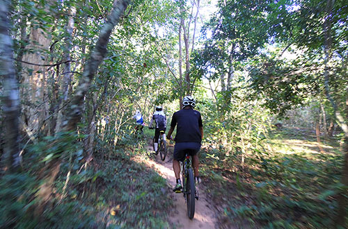 カンボジア・サイクリングツアー2014 アンコール遺跡&田舎道を走る 7日目 アンコールワット&アンコールトム14