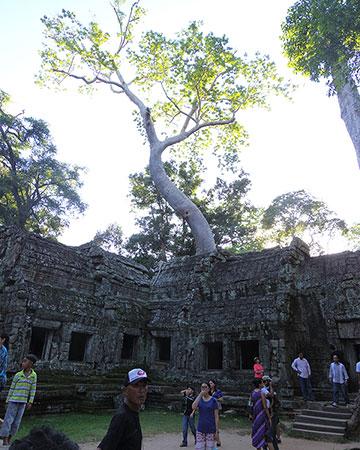 カンボジア・サイクリングツアー2014 アンコール遺跡&田舎道を走る 7日目 アンコールワット&アンコールトム15