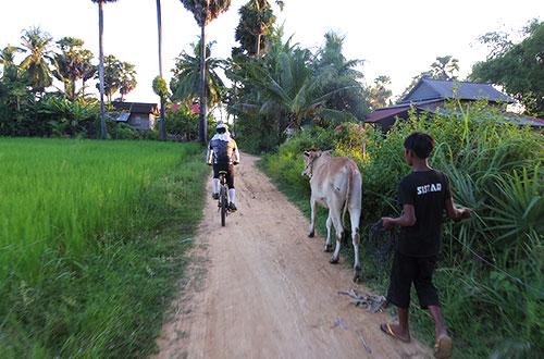 カンボジア・サイクリングツアー2014 アンコール遺跡&田舎道を走る 7日目 アンコールワット&アンコールトム19
