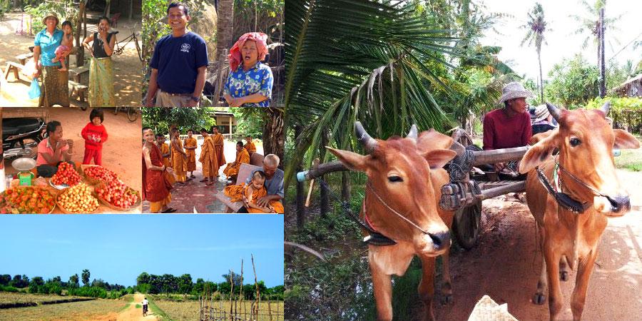 カンボジアの農村で牛車体験